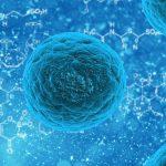 Coronavirus | Quick Guide