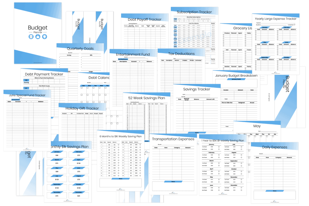165 LifeUpswing budget planner